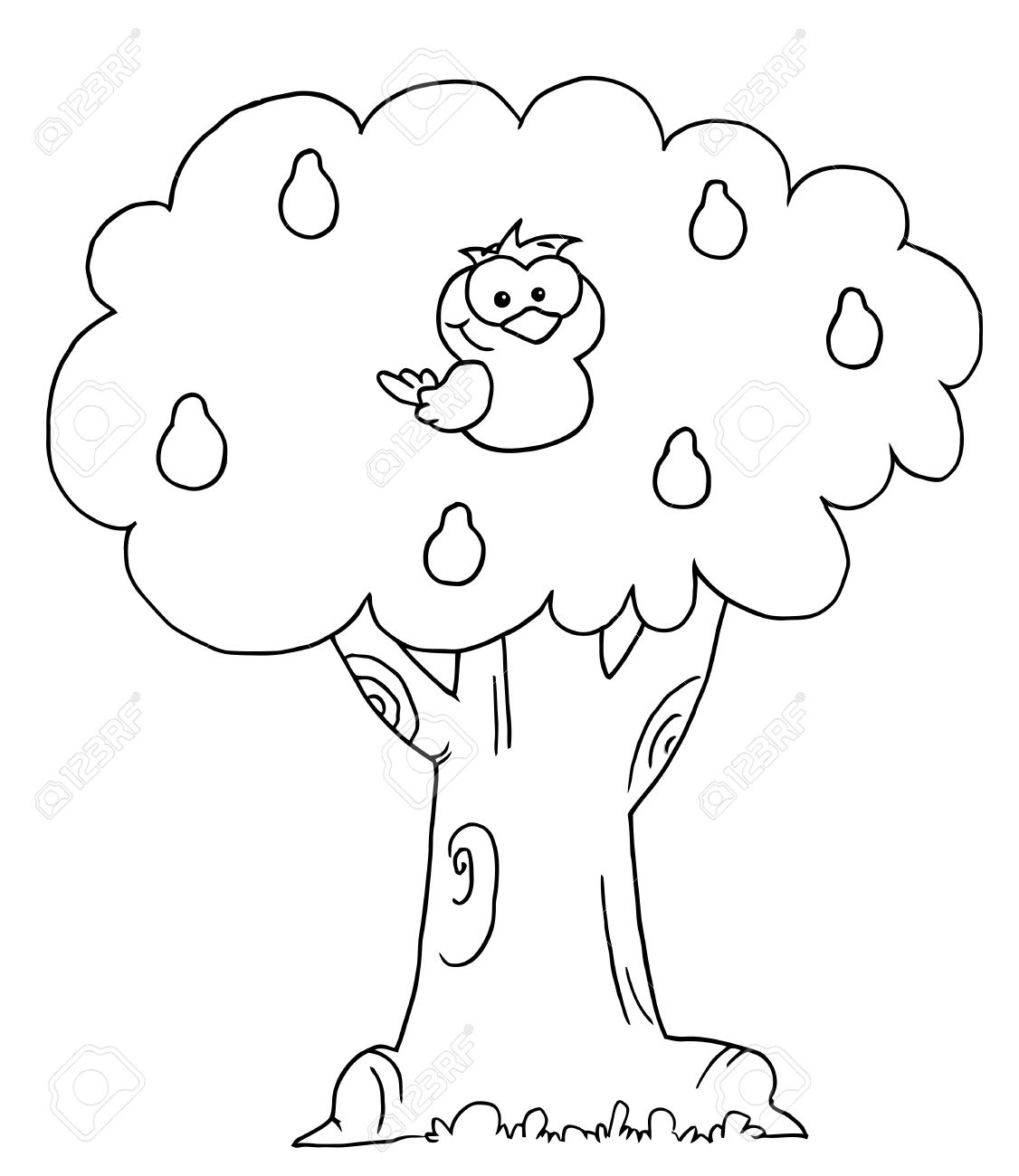 Outlined Partridge In A Pear Tree Royalty Free Cliparts Vectors