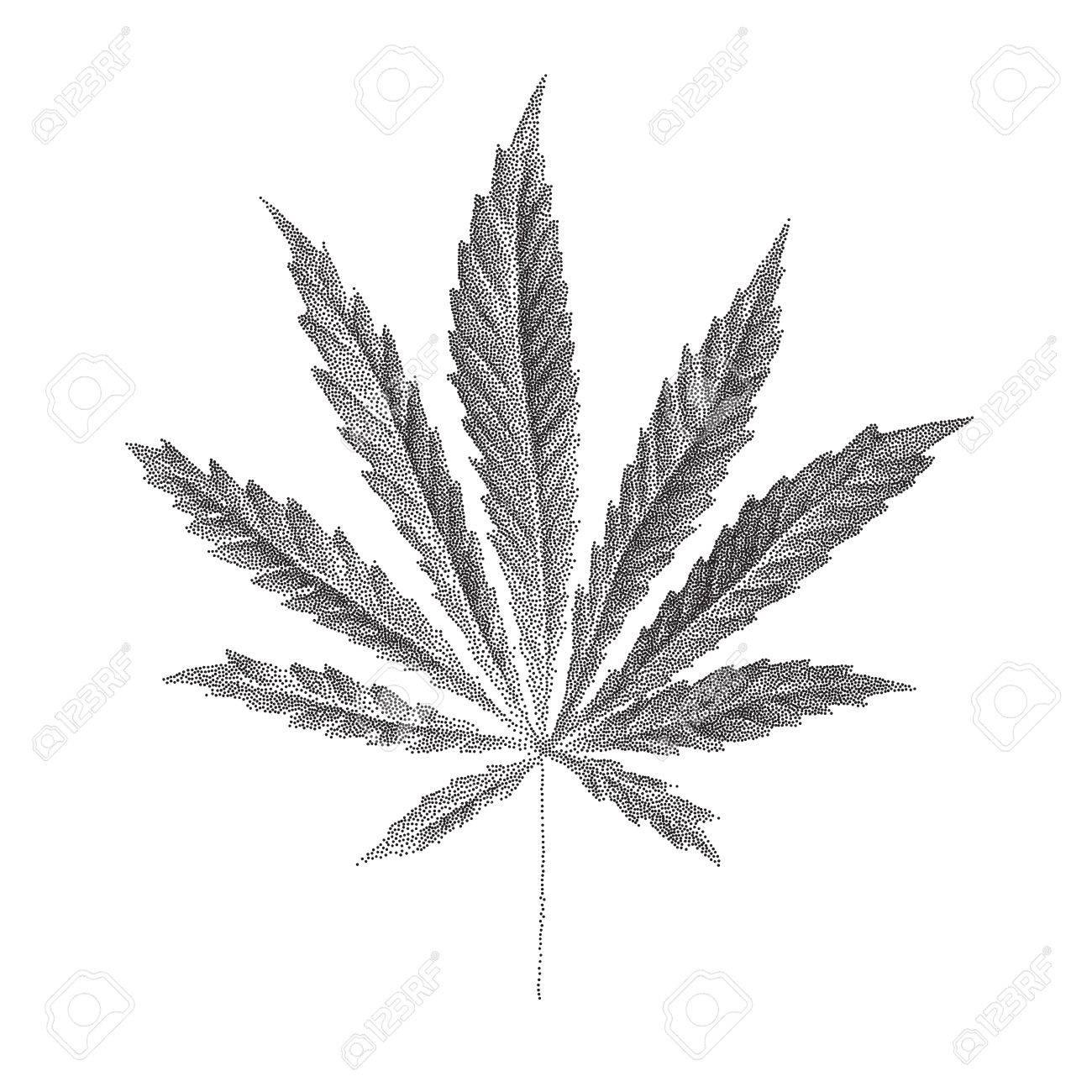 Illustration Vectorielle De La Feuille De Cannabis Sativa Pointillee