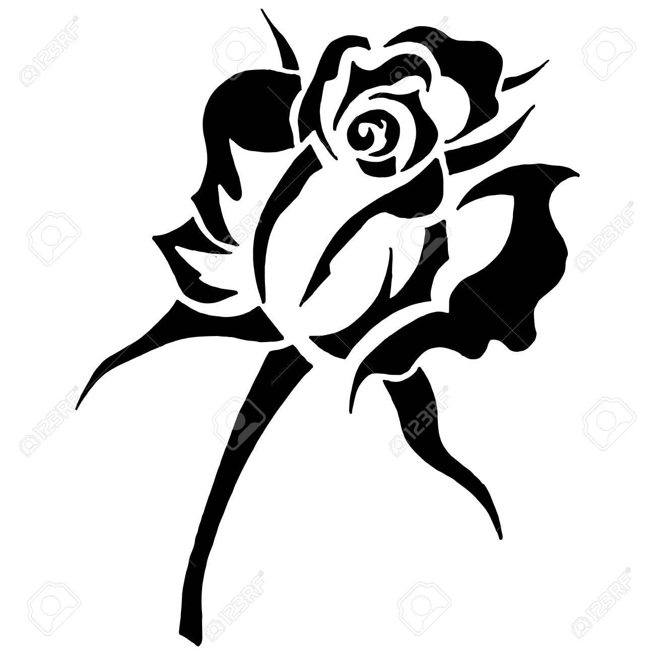 Black And White Blooming Rose Hand Drawn Rose Flower Vector