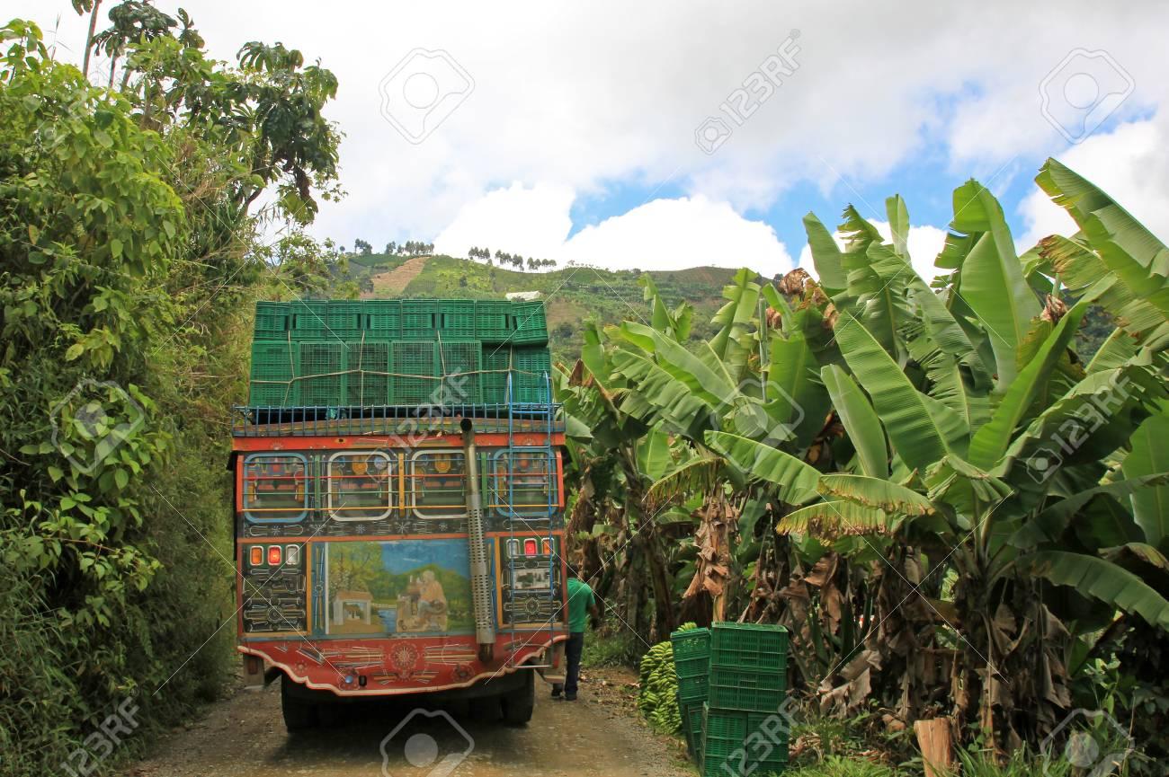 Chargement De Camion Avec Des Bananes Pour Le Transport Pres De El