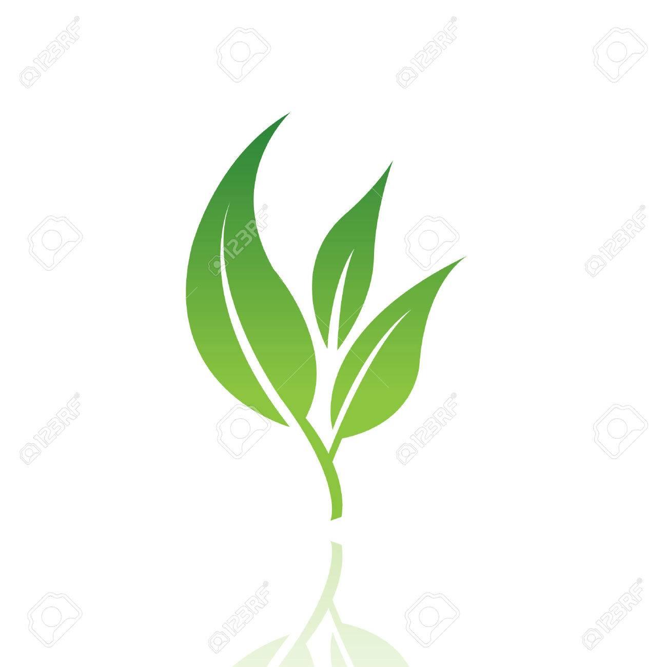 Verdes Logos Imágenes Hoja Logo Hoja Verde Aislado