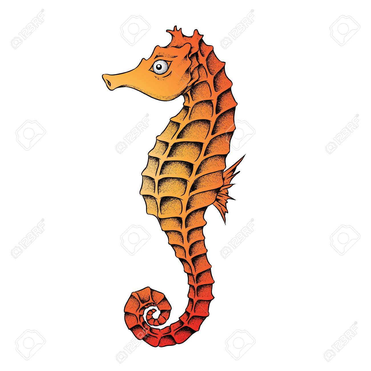 vector illustration of a seahorse isolated on a white background rh 123rf com seahorse vector png seahorse vector free