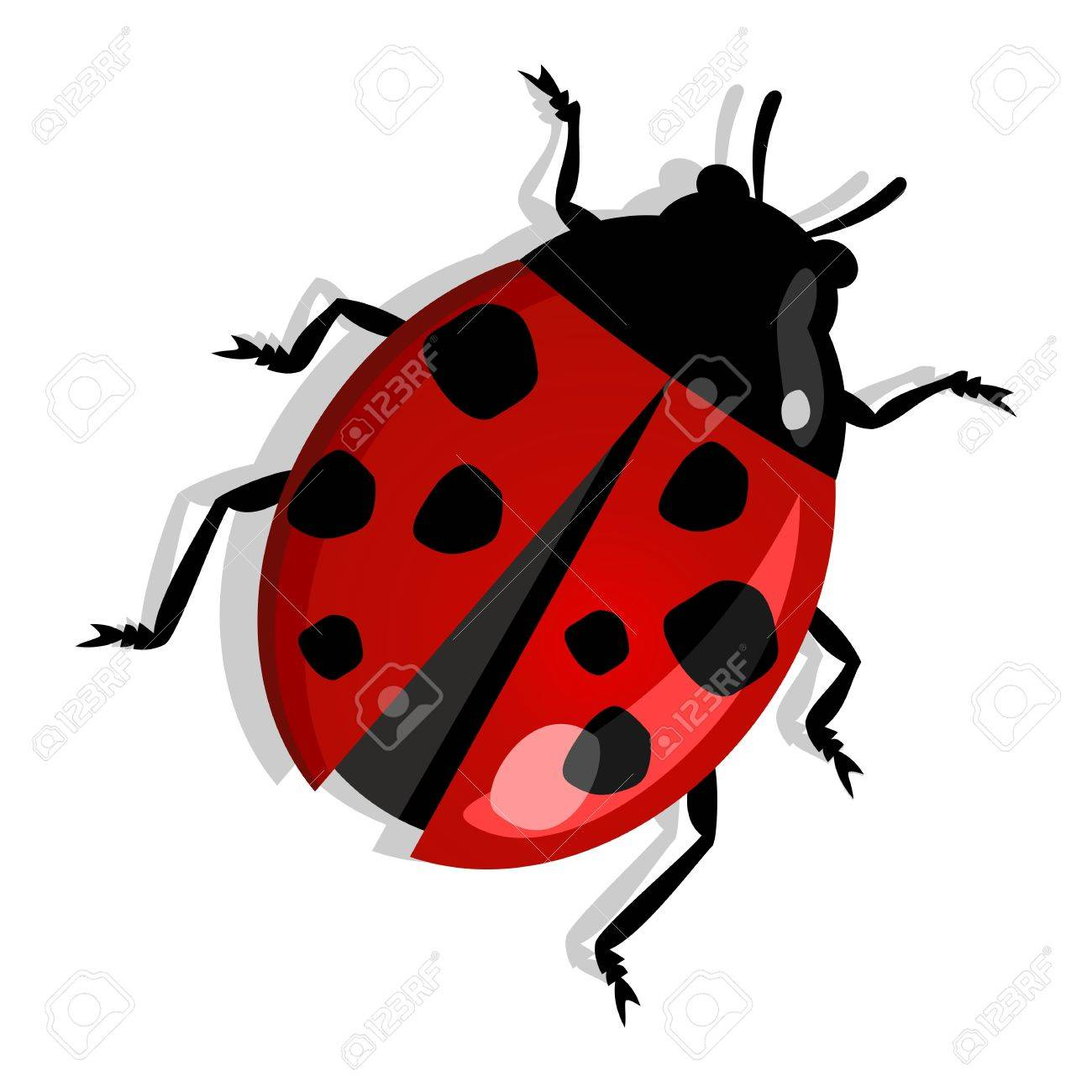 Red beetle isolated over white. Vector file layered for easy manipulation and custom coloring. Stock Vector - 17878223