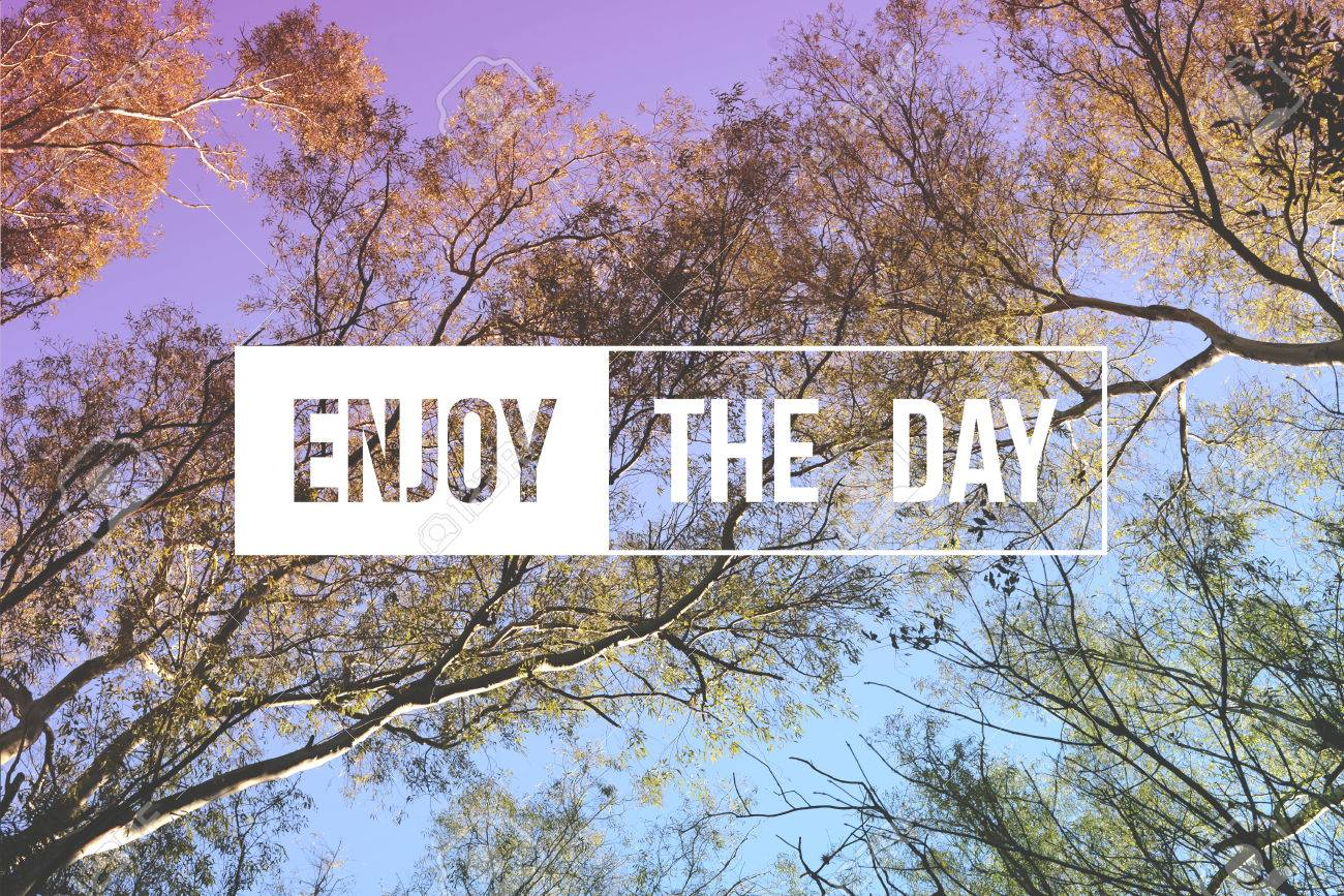 Quote poster design inspiration - Enjoy The Day Motivational Inspiration Quote Concept Tree Landscape Soft Light Color Hipster Style Ideal