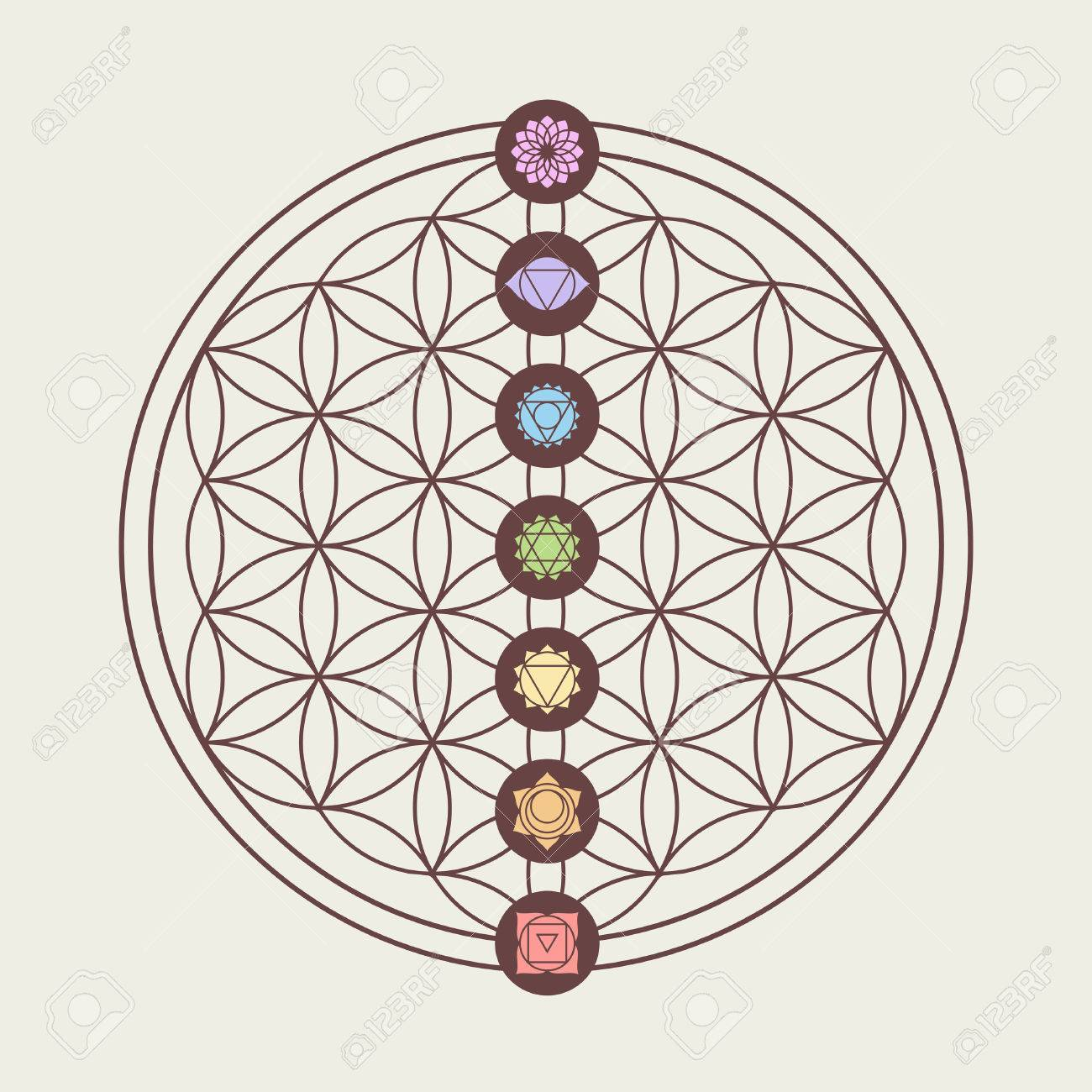 Zen concept illustration, seven main chakra icons placed on flower of life sacred geometry design. - 52162431