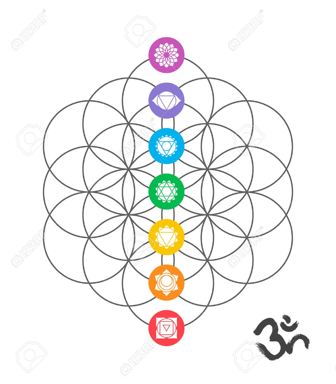 colorful icons main chakras on flower of life sacred geometry rh 123rf com sacred geometry vector set sacred geometry vector free