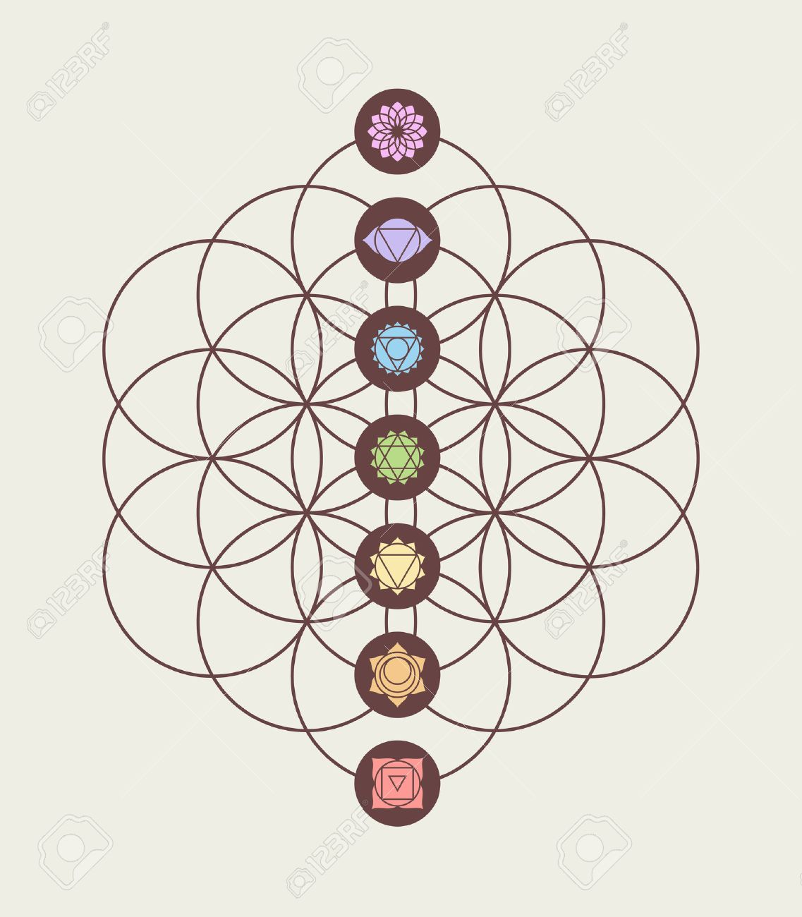 main chakras on flower of life sacred geometry background harmony