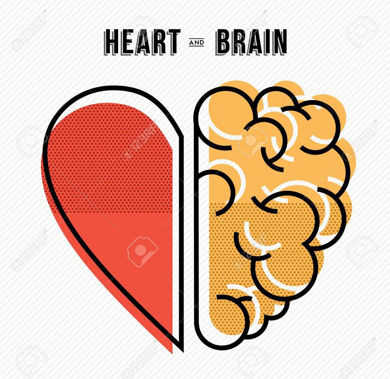 Heart and brain work as team concept design, flat line art modern illustration. - 56349060