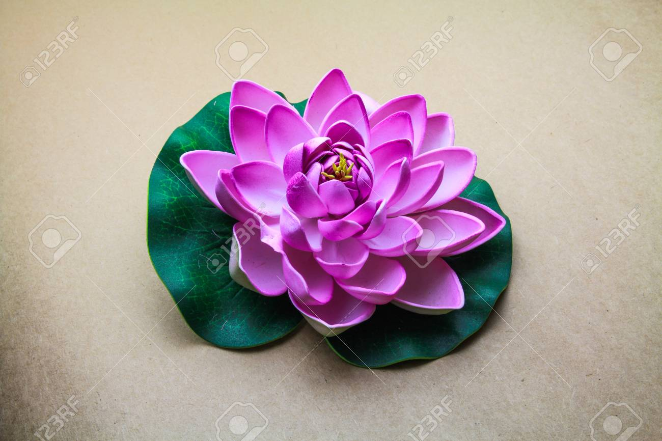 Lotus flower model with leaf isolated on seamless brown paper lotus flower model with leaf isolated on seamless brown paper background stock photo 35243216 mightylinksfo