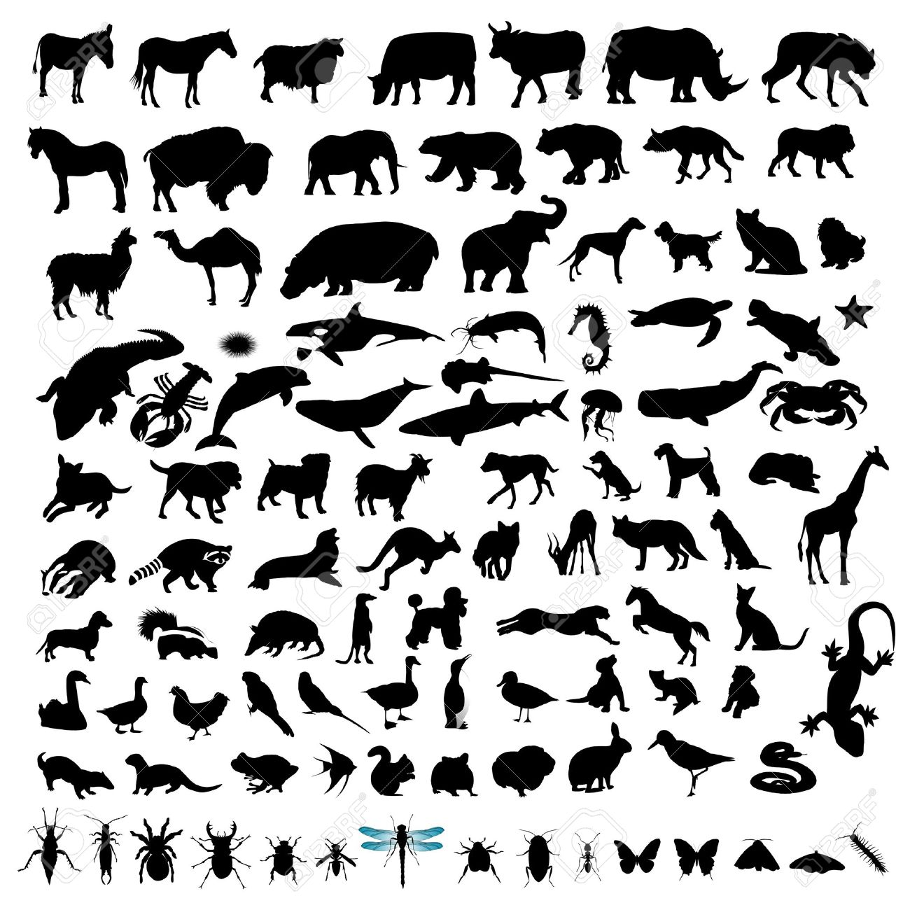 100 Animal Silhouettes Stock Vector - 9678491