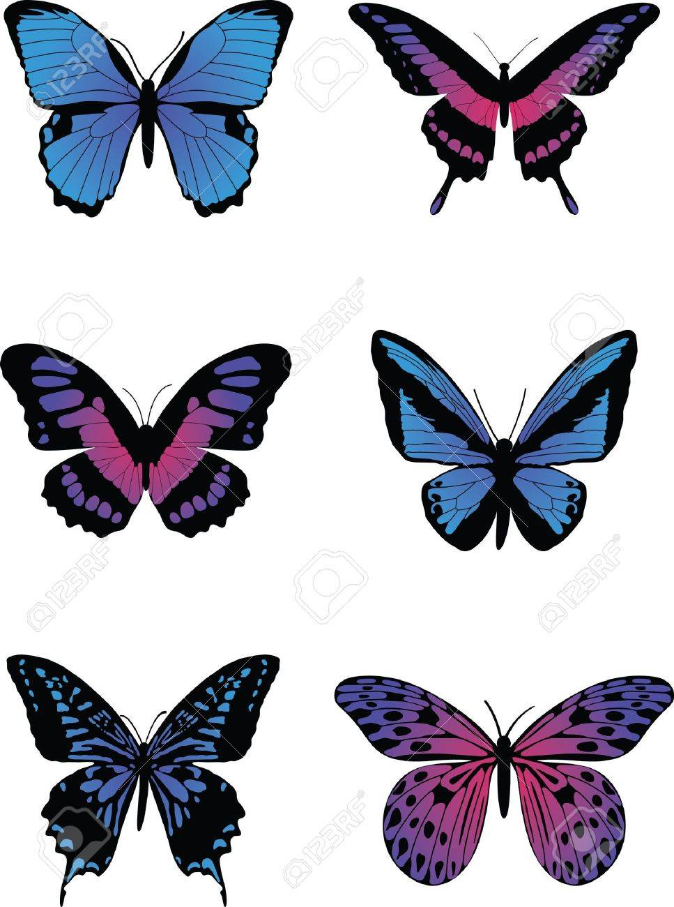 Colorful Butterflies Stock Vector - 16512859