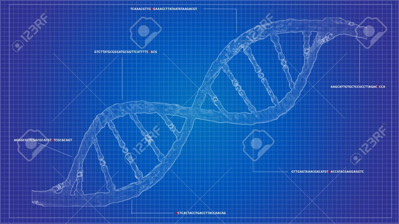 Dna sequencing blueprint rna sequencing dna computational models dna sequencing blueprint rna sequencing dna computational models genome helix background gene crispr helix malvernweather Images
