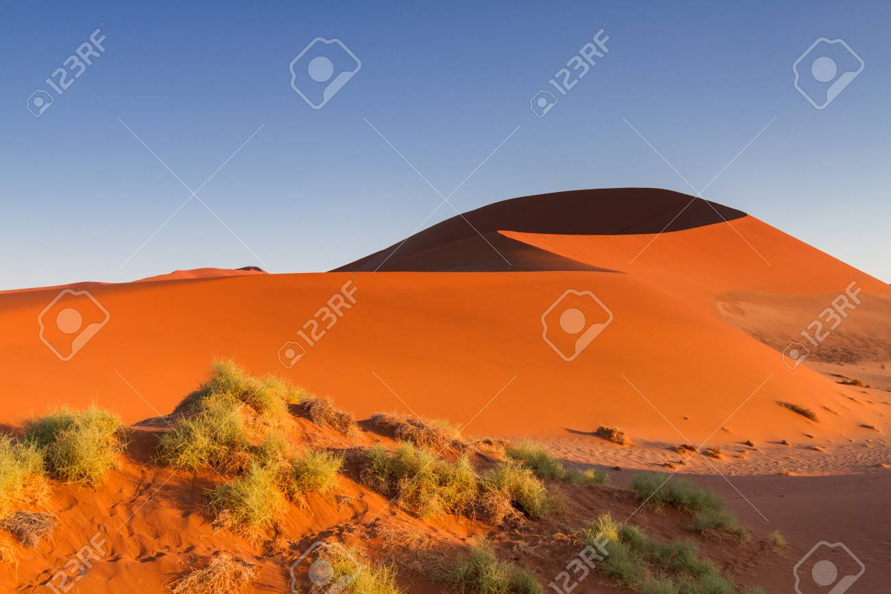 Big Daddy Sand Dune In The Early Morning Light Sossusvlei Namibia