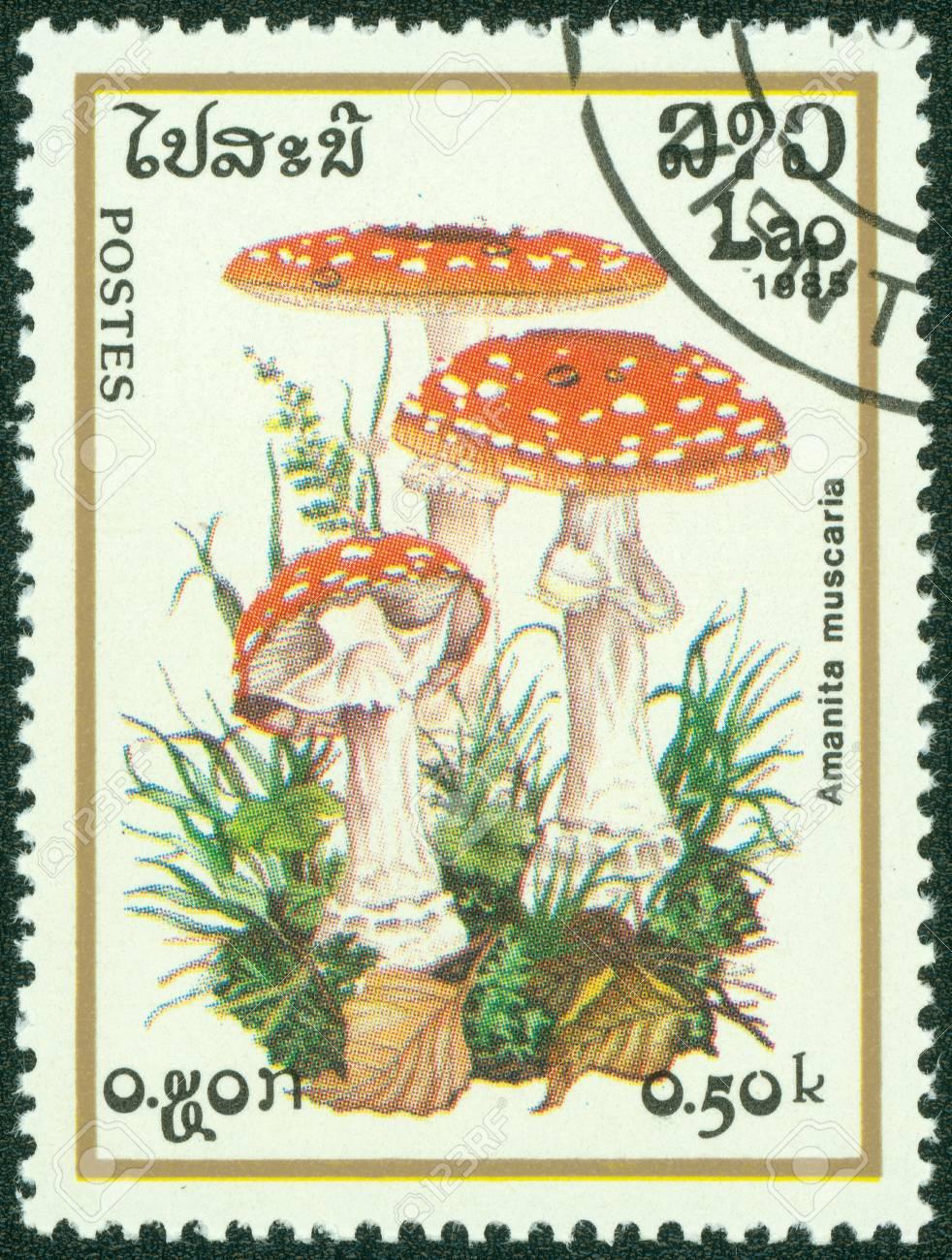 LAOS- CIRCA 1985  A stamp printed in LAOS, shows Poisonous mushroom, circa 1985 Stock Photo - 14830424