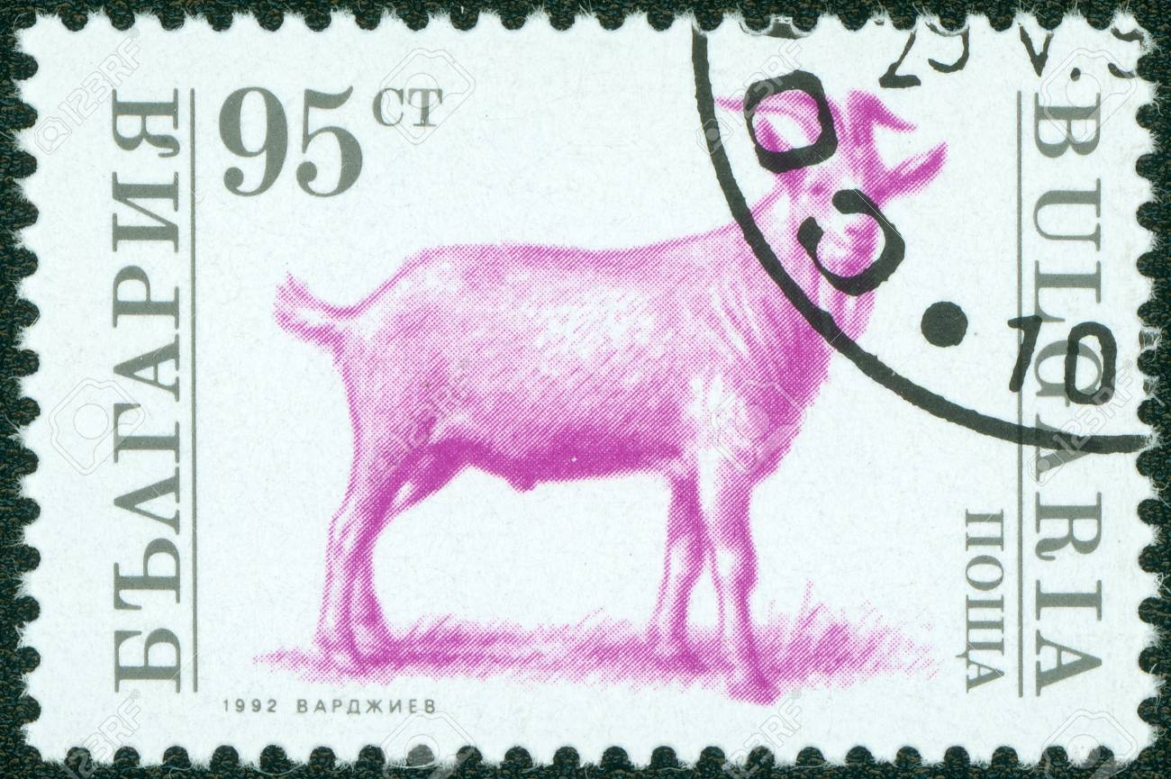 BULGARIA - CIRCA 1992  A stamp printed in Bulgaria shows a goat, circa 1992 Stock Photo - 15108417