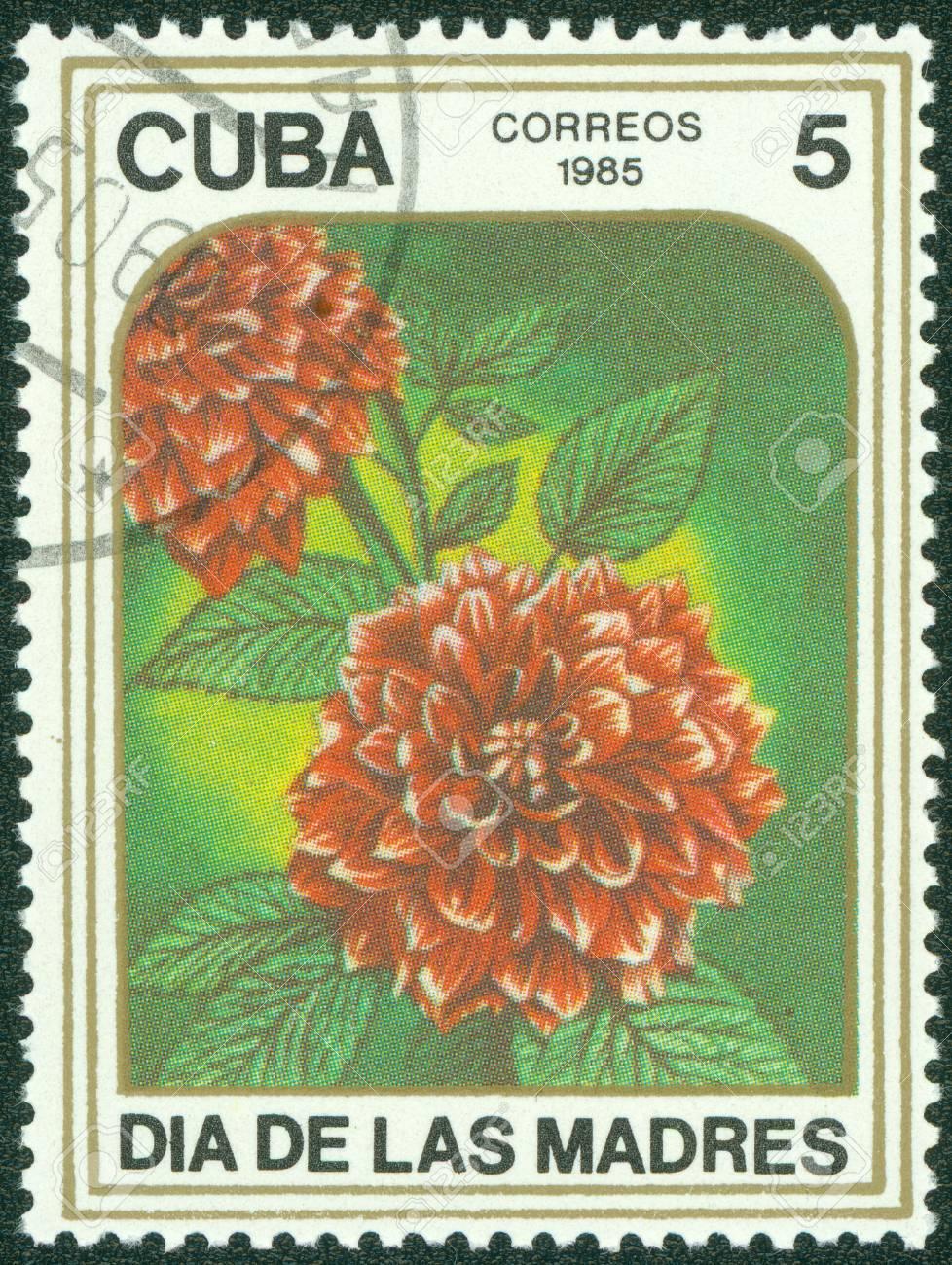 CUBA - CIRCA 1985  A stamp printed in CUBA shows two dahlias , circa 1985 Stock Photo - 15670645