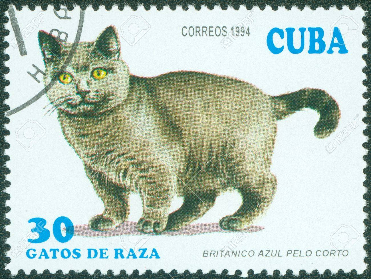 noir cubain chatte gros mature porno tubes