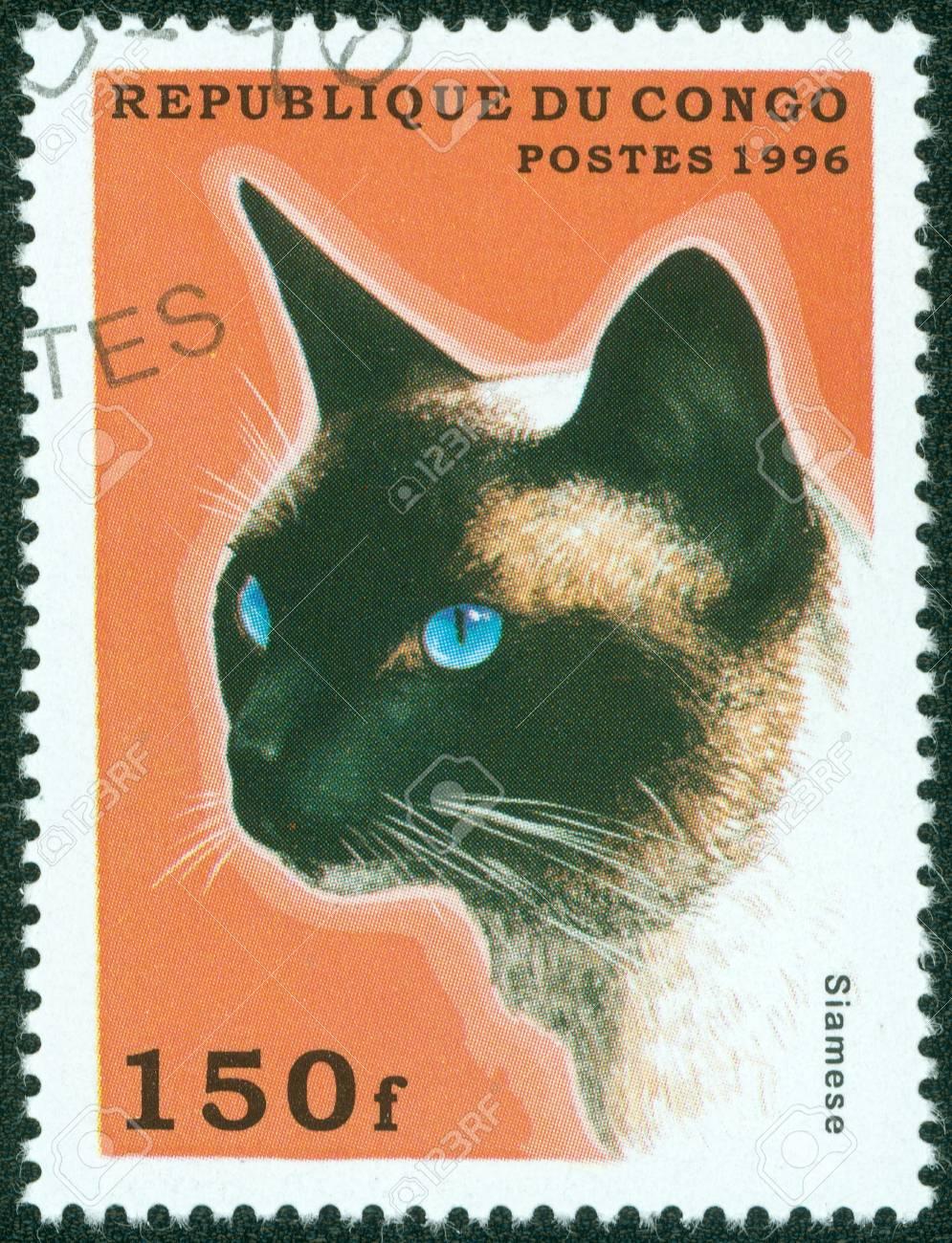 CONGO - CIRCA 1996  A stamp printed in Congo shows Siamese, circa 1996  Stock Photo - 15854953