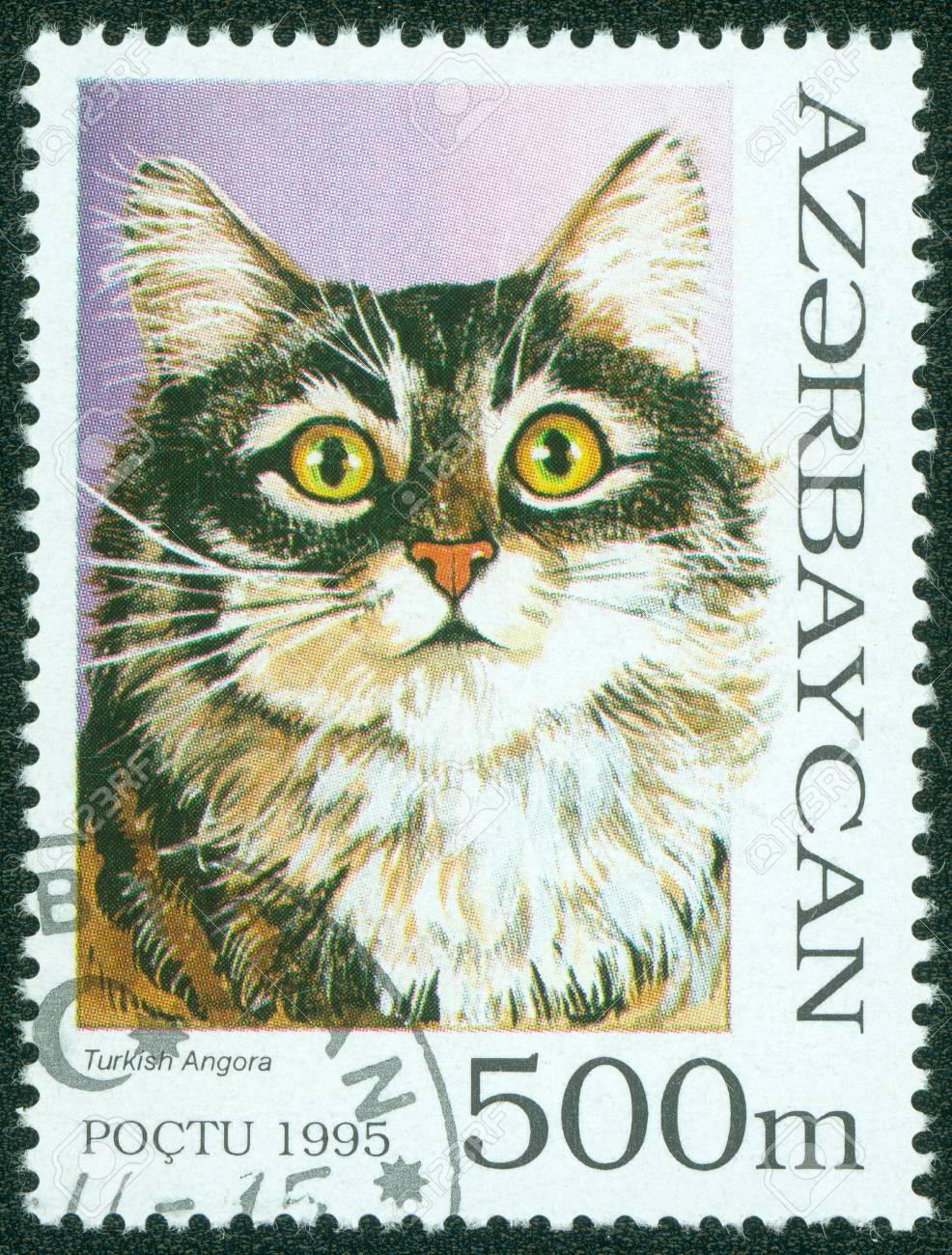 AZERBAIJAN - CIRCA 1995  A stamp printed in Azerbaijan shows cat, circa 1995 Stock Photo - 15854916