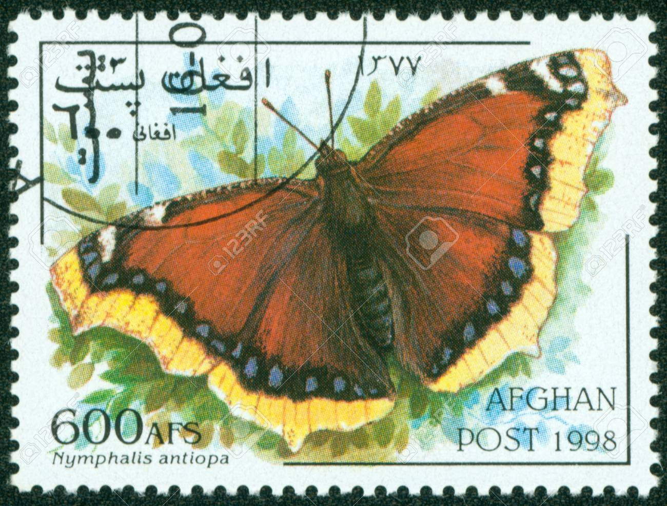 AFGHANISTAN - CIRCA 1998  postal stamp printed in AFGHANISTAN show butterfly, series, circa 1998 Stock Photo - 16266247