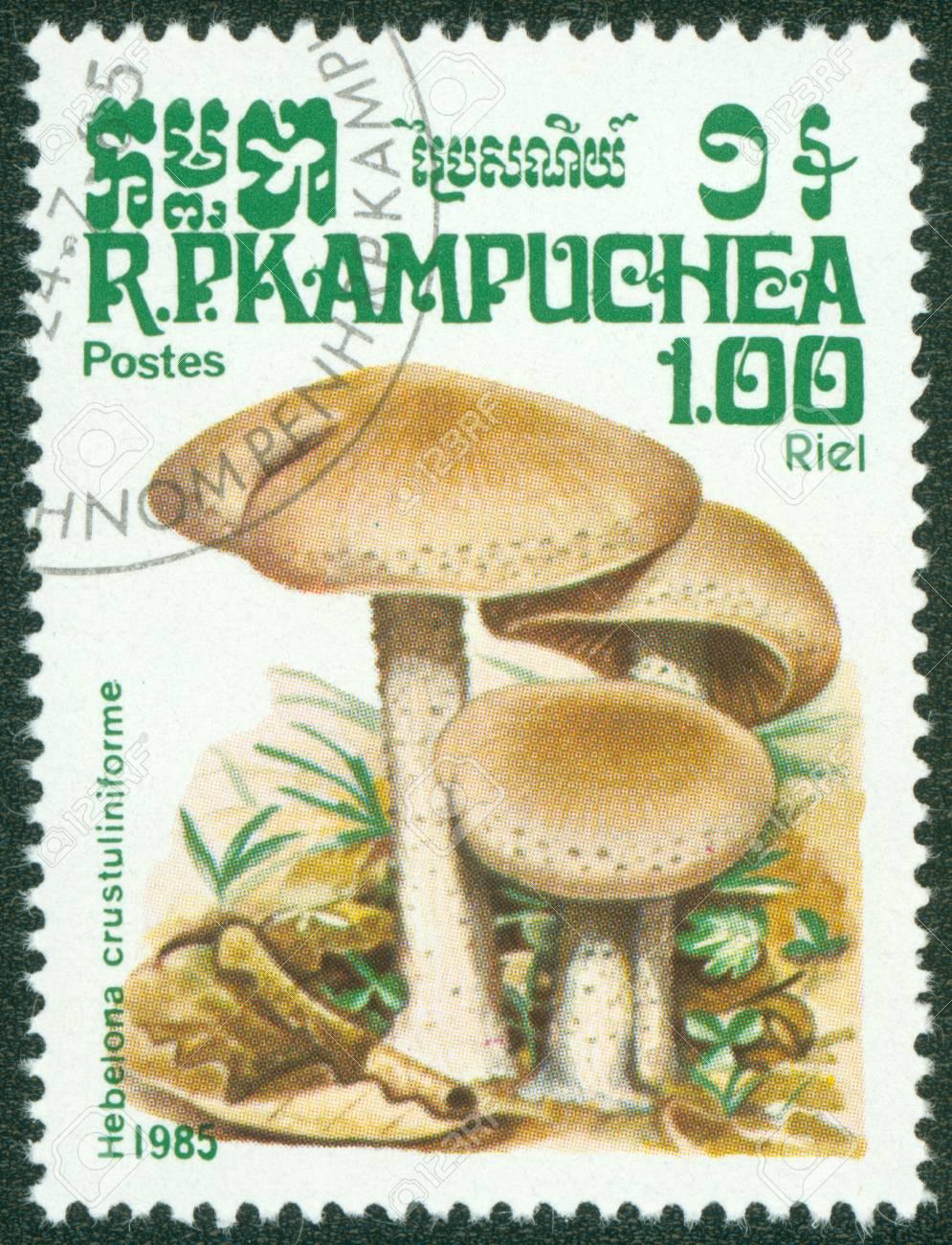 CAMBODIA - CIRCA 1985  A stamp printed in Cambodia shows Mushroom, circa 1985 Stock Photo - 16302144