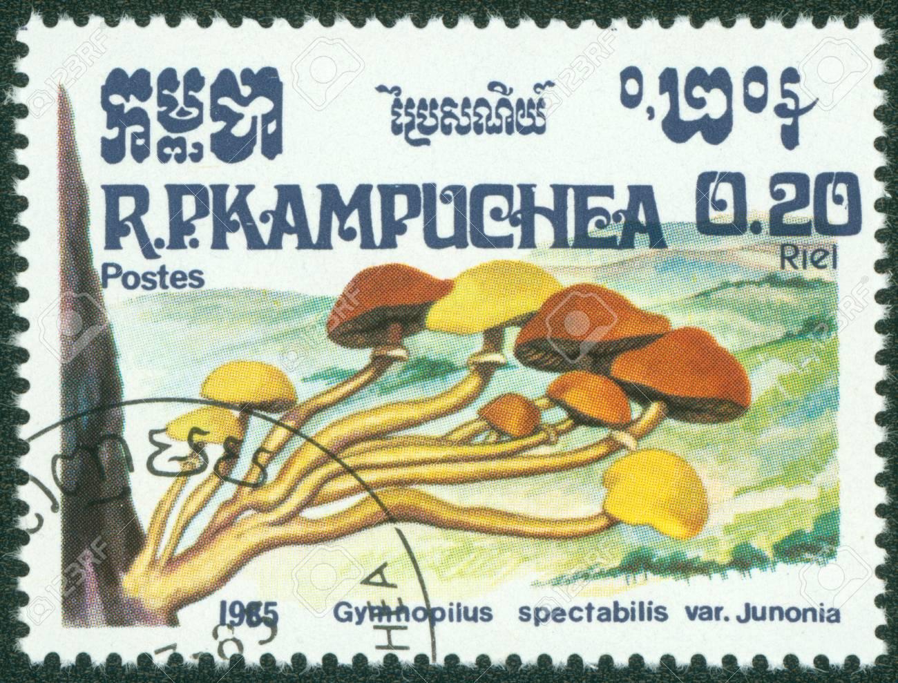 CAMBODIA - CIRCA 1985  A stamp printed in Cambodia shows Mushroom, circa 1985 Stock Photo - 16302149