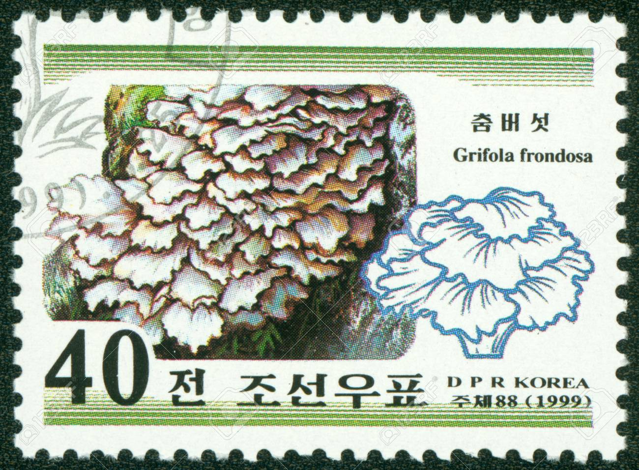 NORTH KOREA - CIRCA 1999  A stamp printed in North Korea, shows mushroom, circa 1999 Stock Photo - 16302137