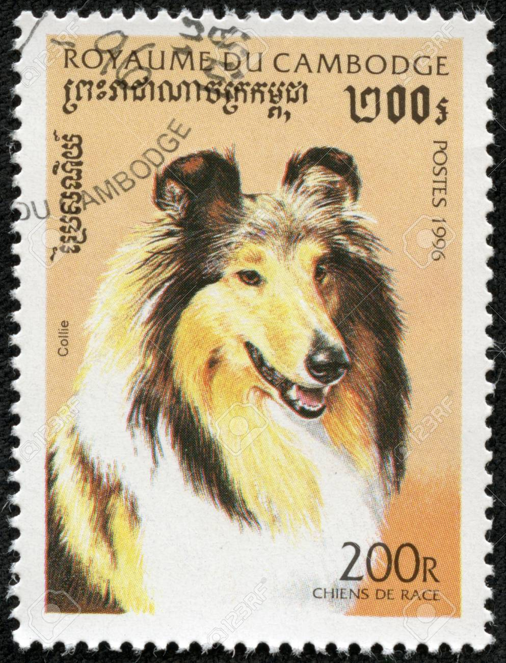 CAMBODIA - CIRCA 1996  A stamp printed in Cambodia shows Dog, circa 1996 Stock Photo - 17199289