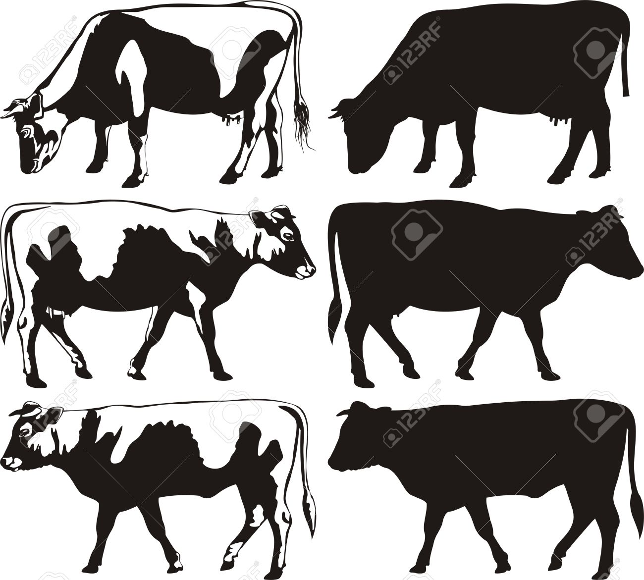 cow silhouette stock photos u0026 pictures royalty free cow