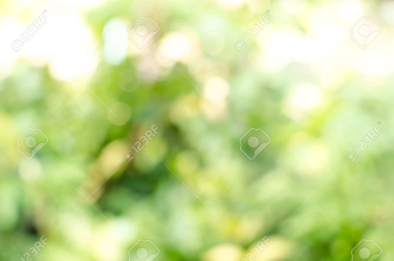 Image Of Green Blurred Garden Background Stock Photo Picture And