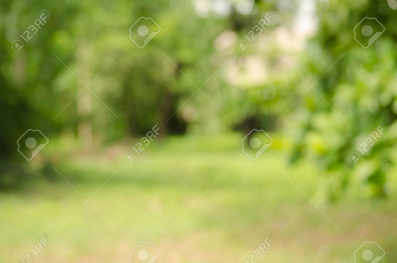 Image Of Abstract Nature Blur Background Stock Photo Picture And