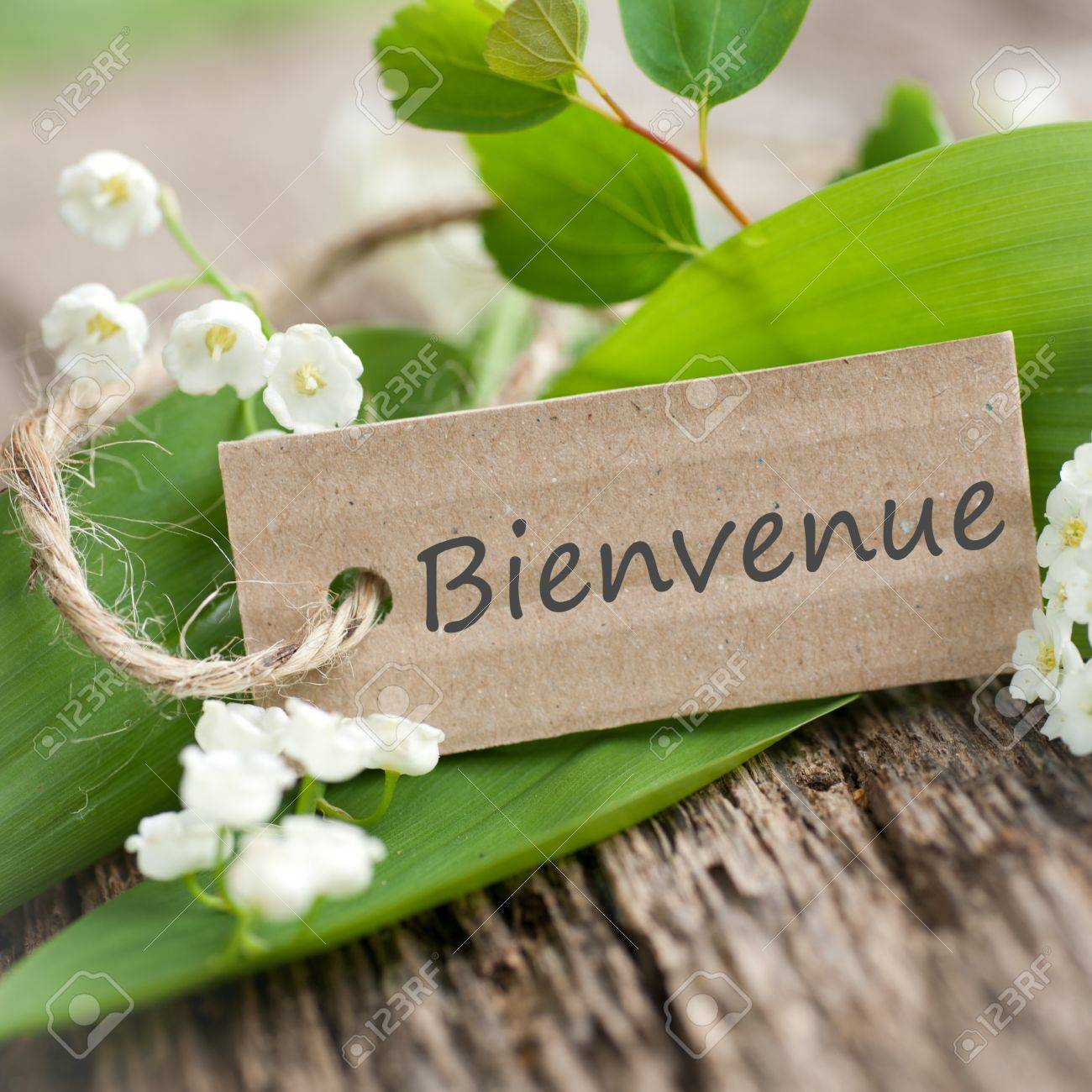 Label with french text  Welcome Stock Photo - 17076860