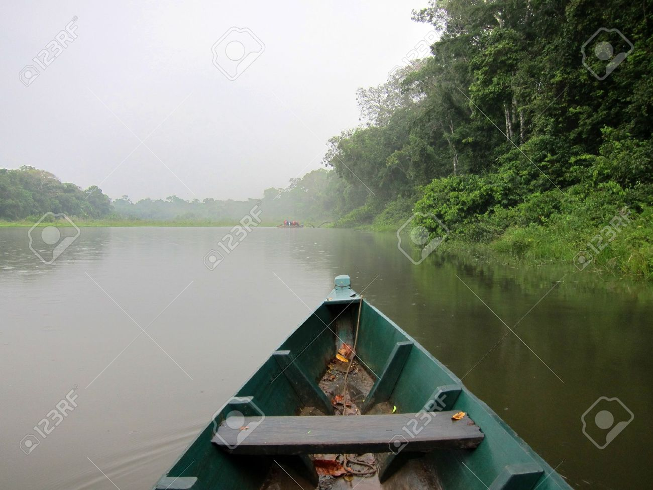 Boat cruise in the Amazon rainforest, Peru Stock Photo - 10801874