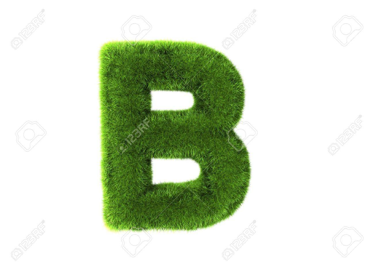 A grass b isolated on a white background Stock Photo - 8646270