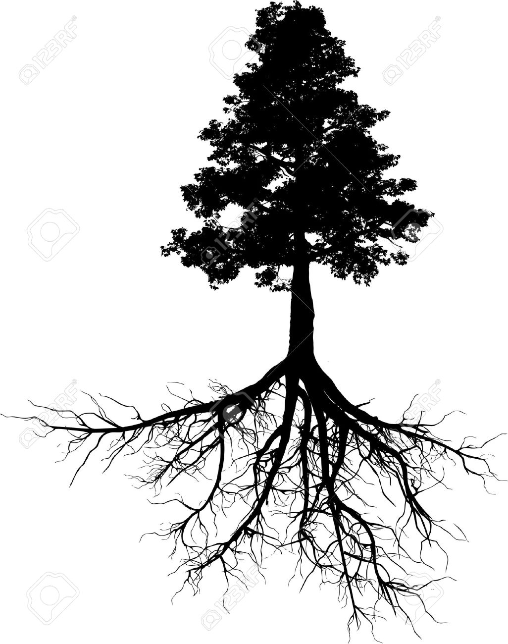 Silhouettes of tree with its roots Stock Vector - 11136362