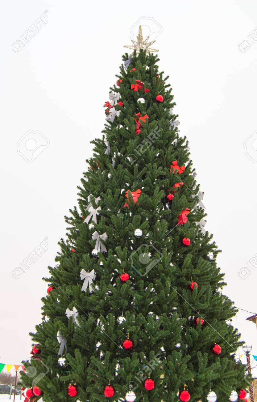 Christmas Tree Bows White.Decorated Christmas Tree With Red And White Artificial Stars