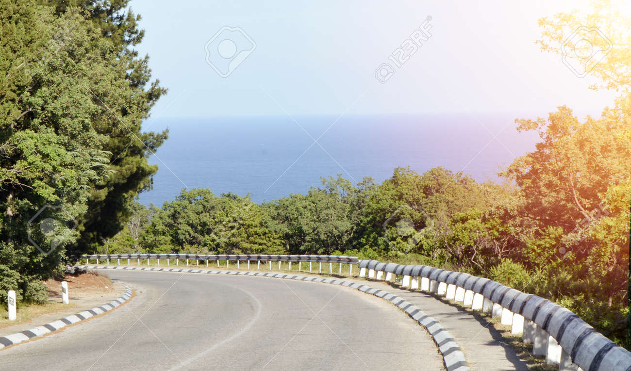 Highway leading to the sea coast, along the trees, bright sunlight - 169661570