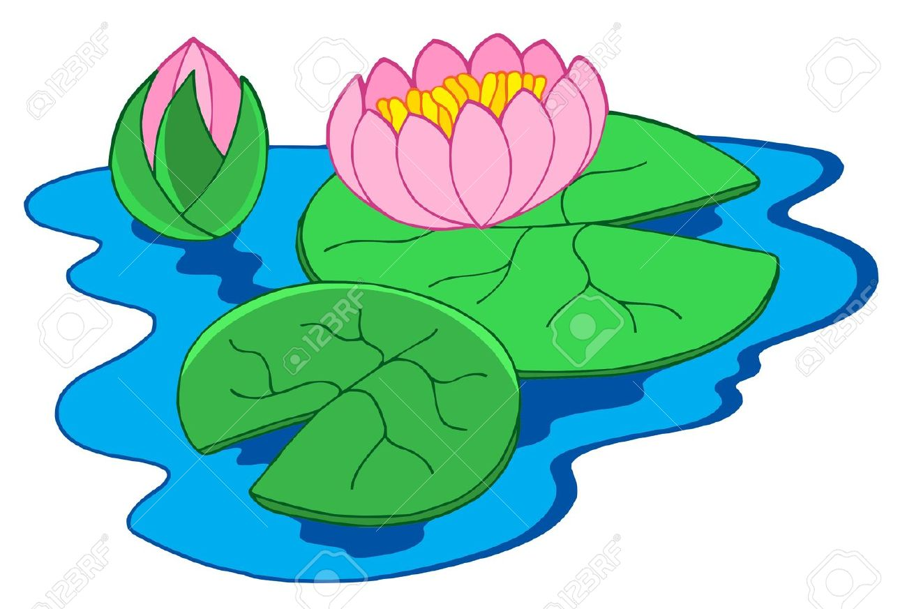 pink water lilies vector illustration royalty free cliparts rh 123rf com blue water lily clipart water lily pond clipart