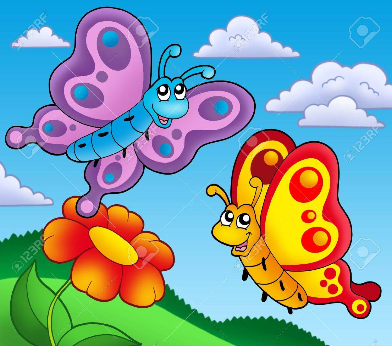 two butterflies images u0026 stock pictures royalty free two