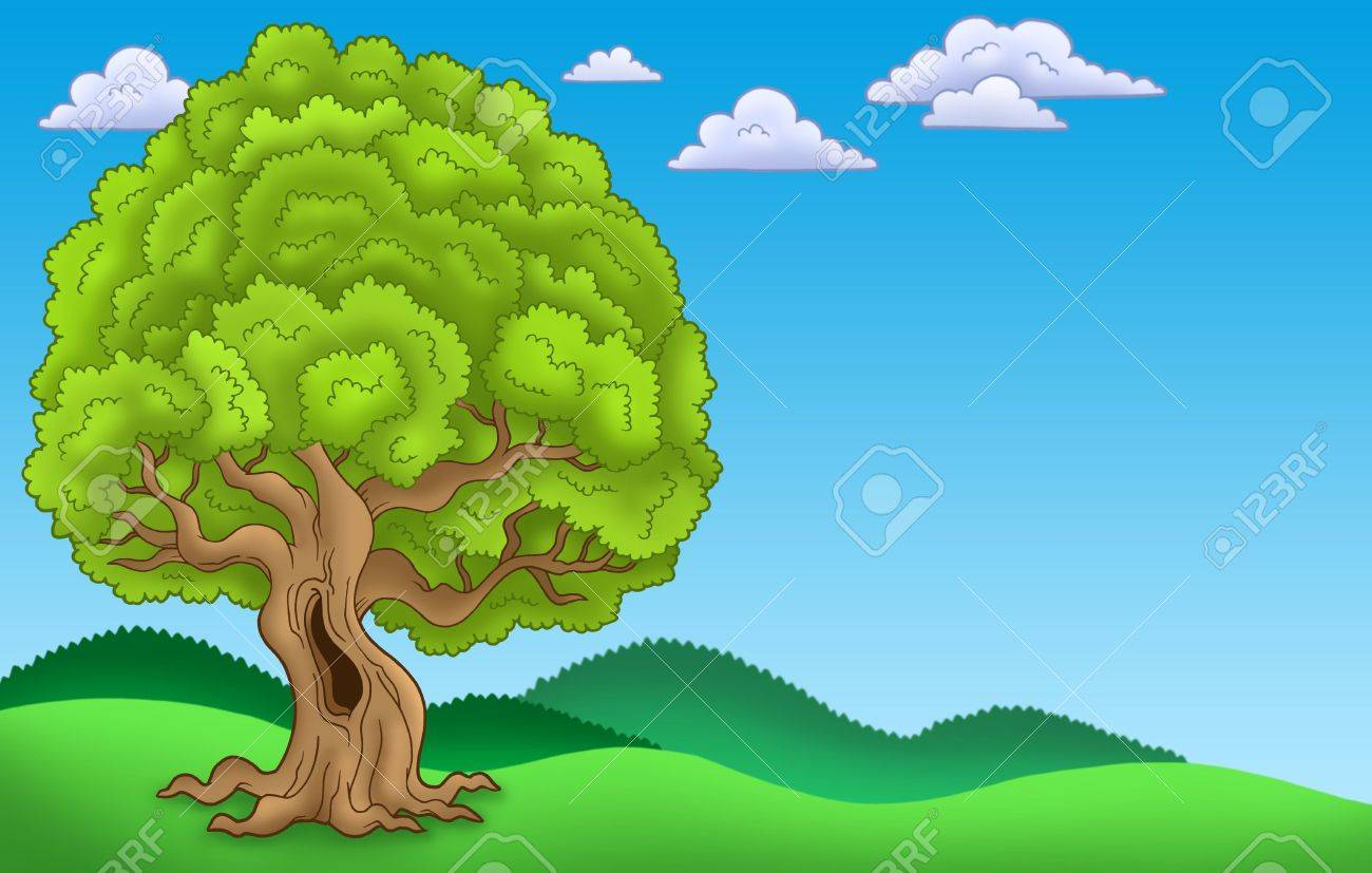 Landscape with big leafy tree - color illustration. Stock Photo - 6579465