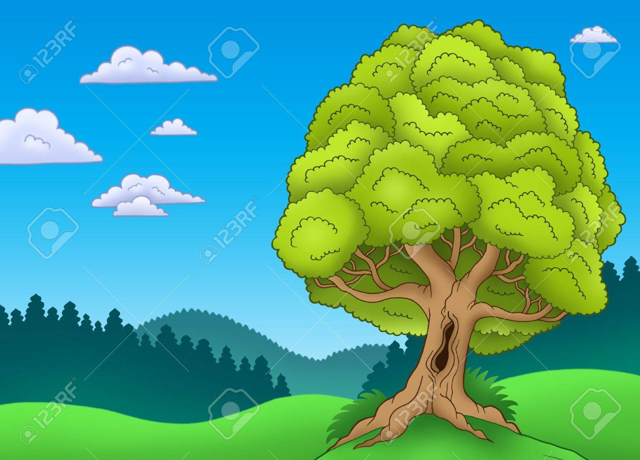 Big leafy tree in landscape - color illustration. Stock Photo - 7150756