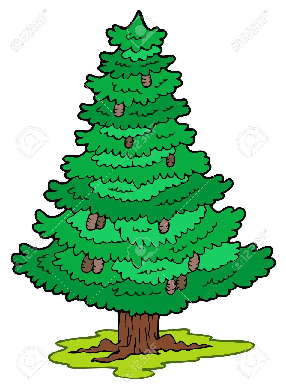 Cartoon coniferous tree Stock Vector - 7469512
