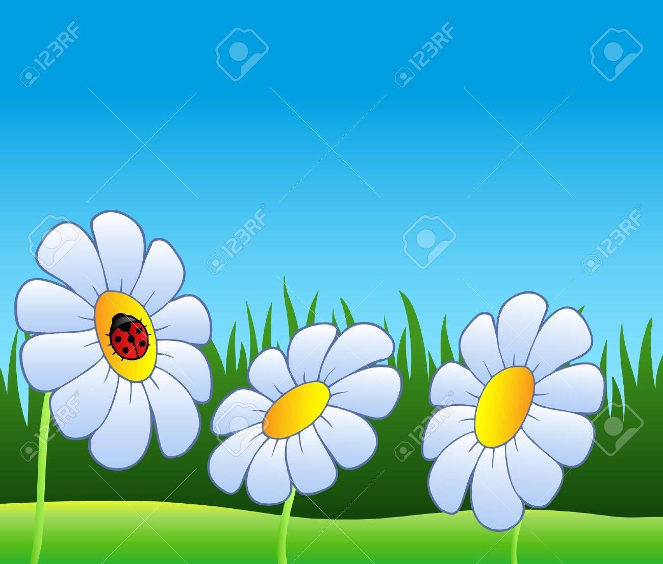 Three daisies and ladybug - vector illustration. Stock Vector - 8976748