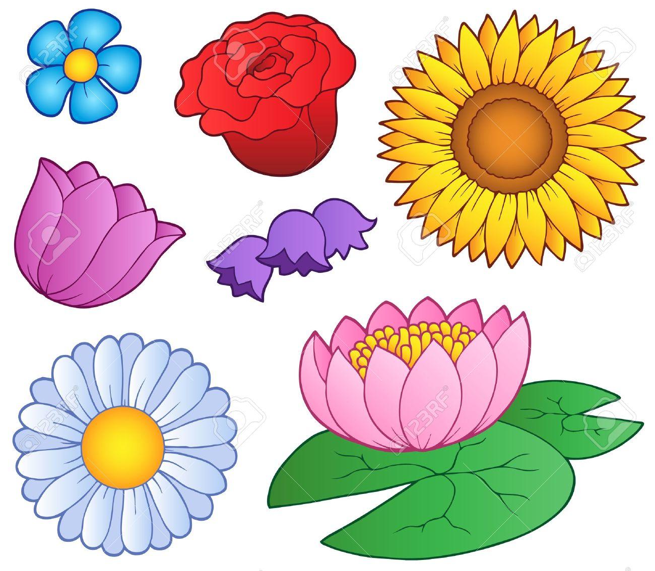 Various flowers set - vector illustration. Stock Vector - 9674318