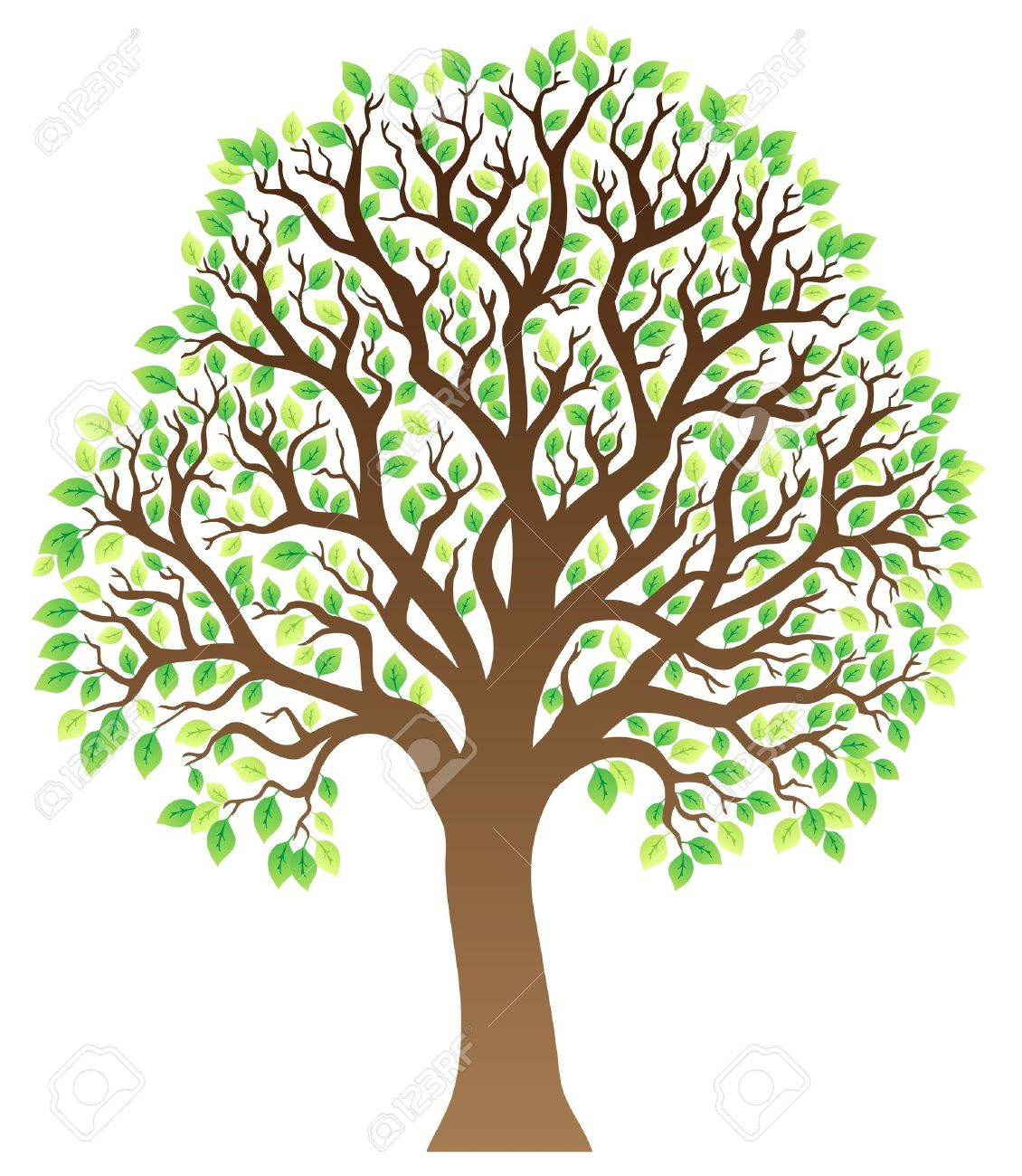 Tree with green leaves 1 How To Draw A Cartoon Tree Without Leaves