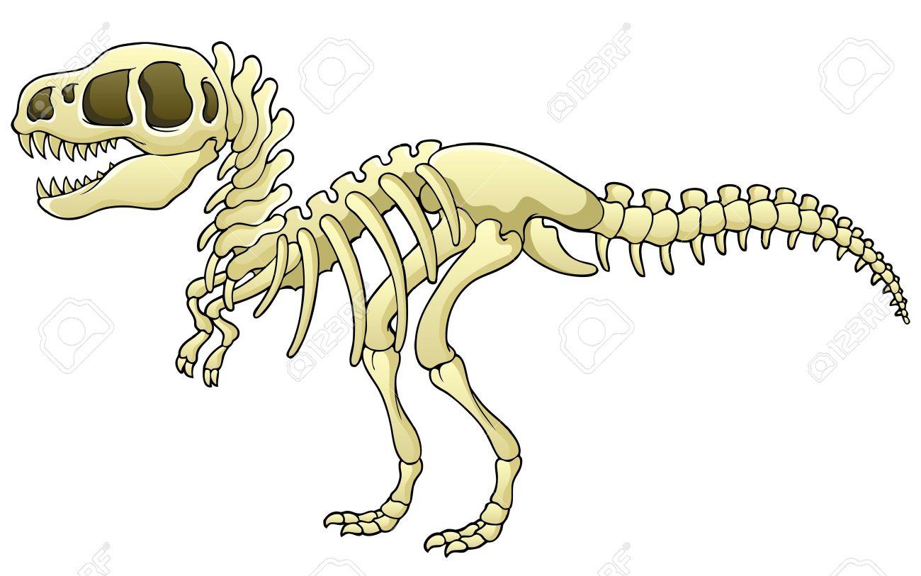 Tyrannosaurus Skeleton Image - Vector Illustration Royalty Free ...