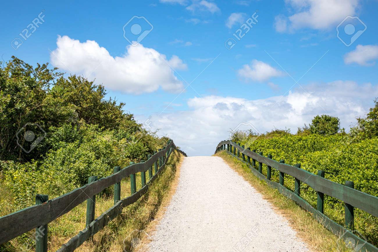 Beach transition on Schiermonnikoog, green fences to the horizon, gravel path across the dunes to the beach at schiermonnikoog island of the netherlands - 169481637