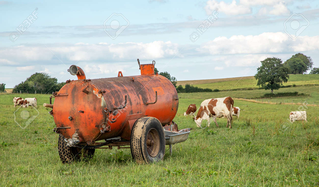 Manure tank in agricultural land, a farmyard, bright green meadow with cows and sky with clouds - 169481695