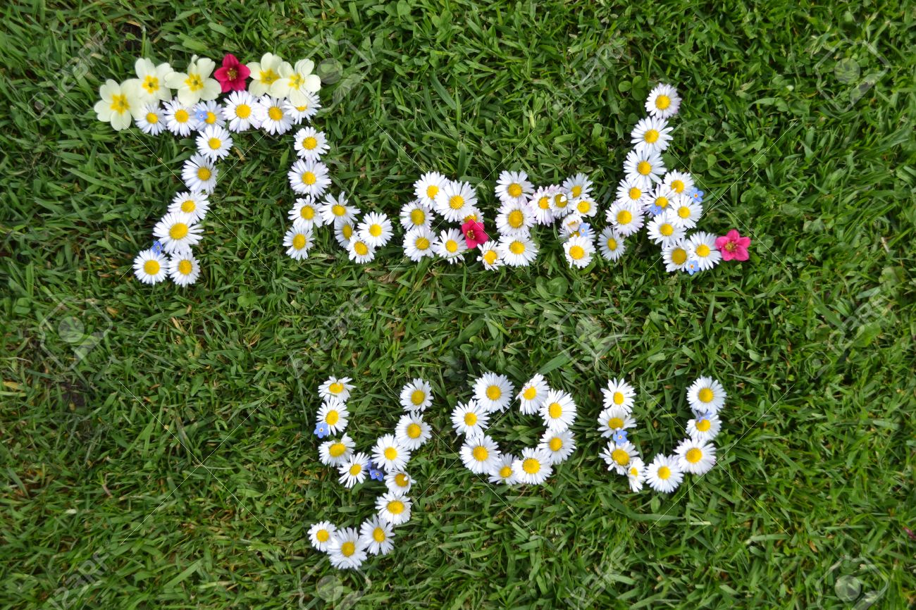 23921004-Thank-you-flower-message-Stock-Photo.jpg