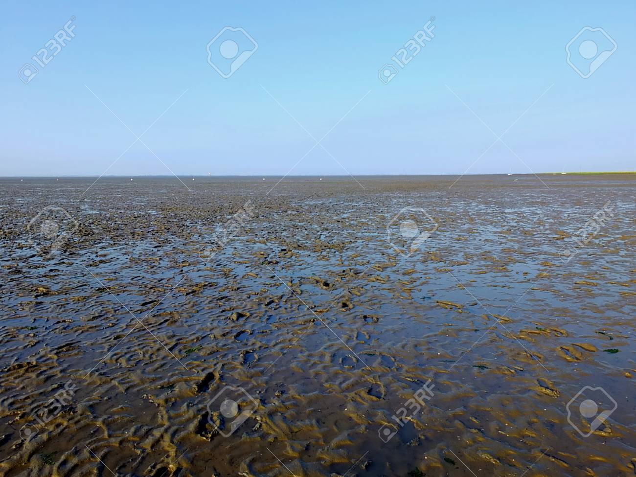 The Wadden Sea in northern Germany Standard-Bild - 47746222